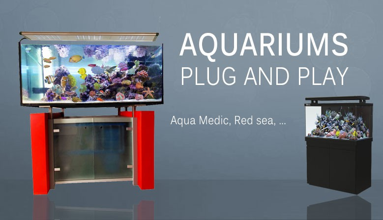 Boutique vpc aquarium r cifal recif 39 art for Aquarium vpc